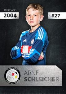 arne_schleicher